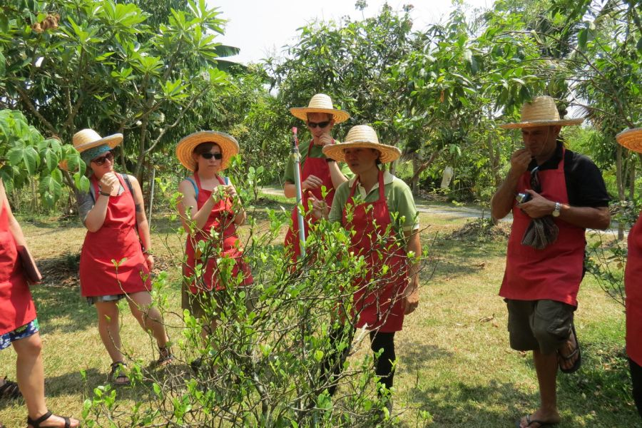 Thailand Farm Cooking Course